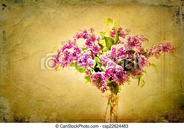 Lilac Blooms - csp22624483