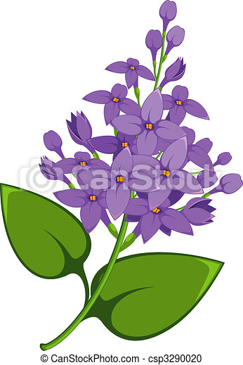 lilac branch over white eps 8 jpeg ai vector clipart search rh canstockphoto com lilac borders clip art lilac roses clip art