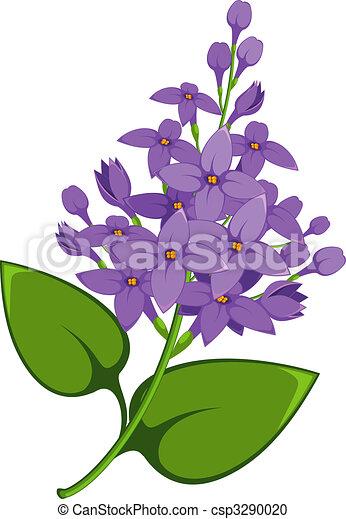 Lilac branch - csp3290020