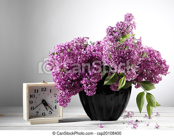 lilac flower - csp20108400
