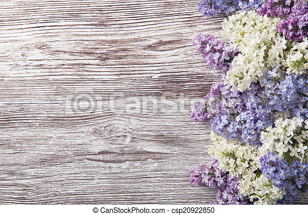 lilac flowers on wood background, blossom branch on vintage wood - csp20922850