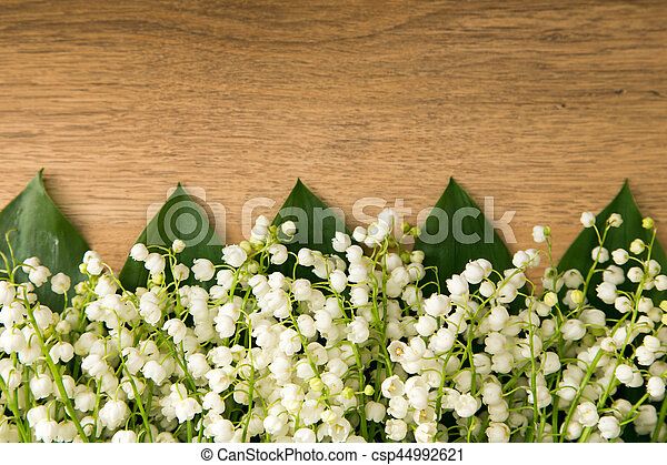 Lilies Of The Valley Beautiful Small White Spring Flowers On Wooden