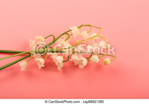 lilies of the valley on a pink background - csp88921380