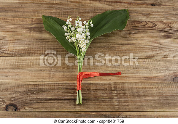 Lilies of the valley on a wooden background - csp48481759