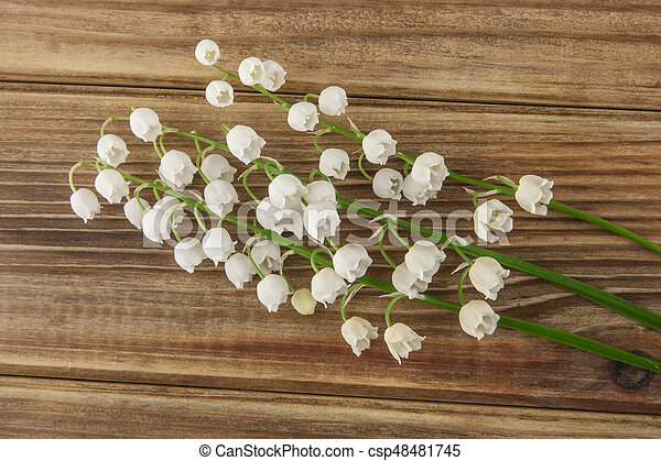Lilies of the valley on a wooden background - csp48481745