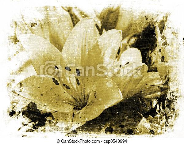 lillies, grunge - csp0540994