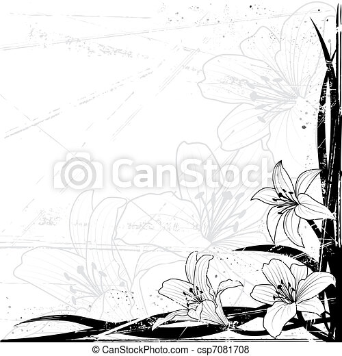 lily background - csp7081708