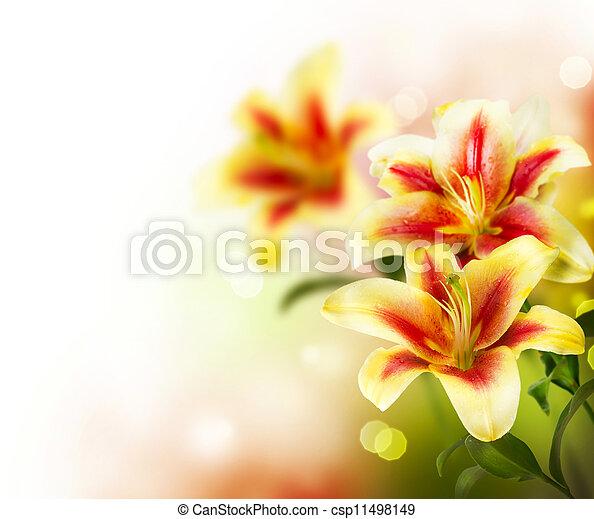 Lily flowers border designspring flowers stock photo search lily flowers border designspring flowers csp11498149 mightylinksfo