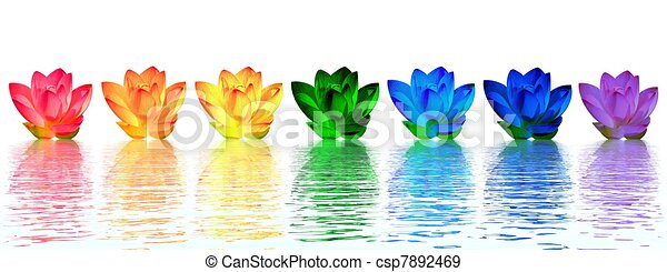 Lily flowers chakras - csp7892469
