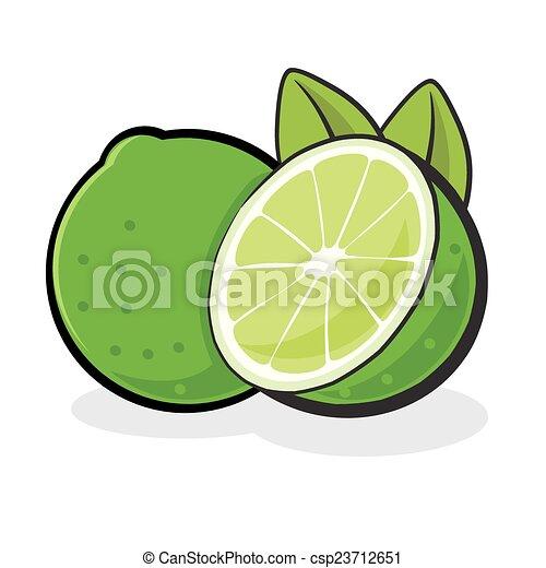Lime Fruit - csp23712651