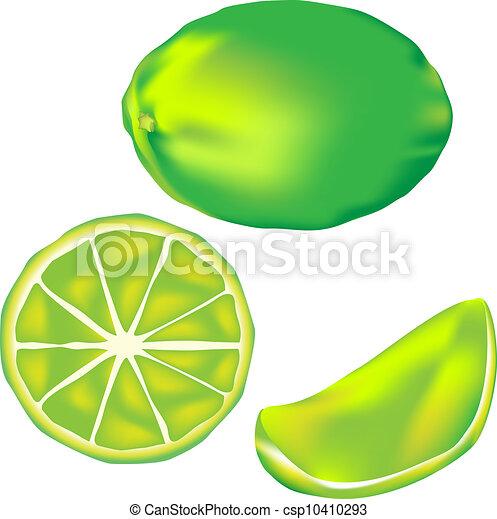 Lime fruit illustration - csp10410293