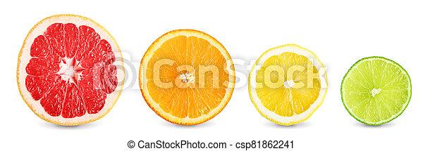 Lime, grapefruit, orange and lemon slices - csp81862241