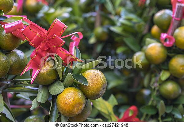 Limes - csp27421948