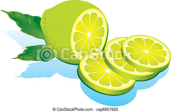 limes. - csp6657625