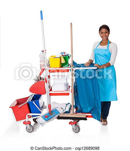 Limpieza femenina con equipo de limpieza - csp12689098