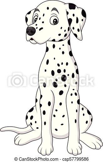 Un lindo perro dálmata - csp57799586