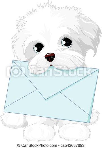 Lindo perro entregando sobres de correo - csp43687893