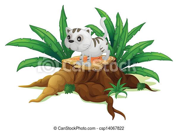 Un lindo gato en un muñón con hojas - csp14067822