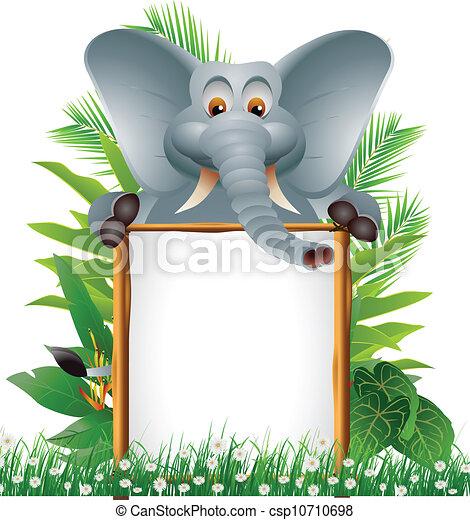 Lindo elefante con una señal en blanco - csp10710698