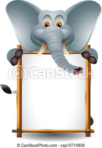 Lindo elefante con una señal en blanco - csp10710939