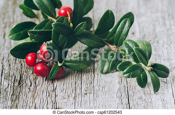 Lingonberries with leaves on a wooden background - csp61202543