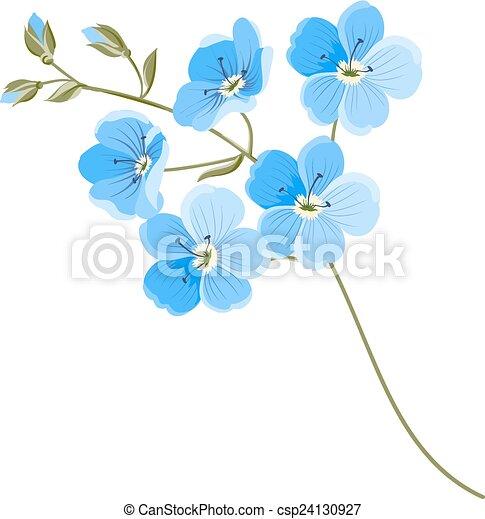 lino, flor - csp24130927