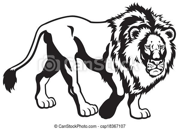 Lion black white csp18367107