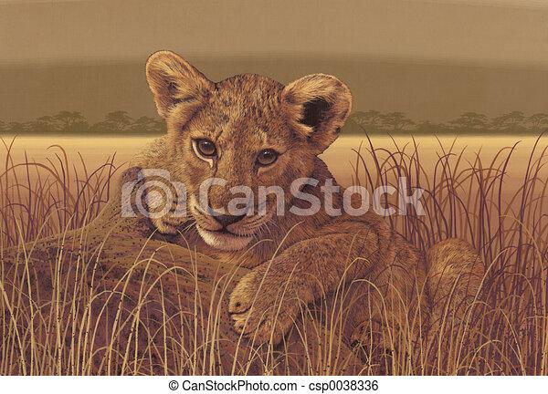 Lion Cub - csp0038336