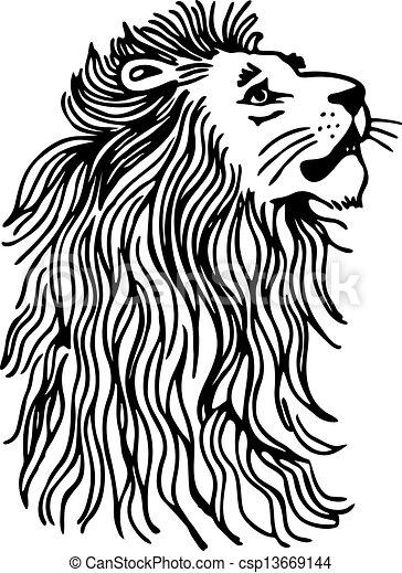 Lion - csp13669144