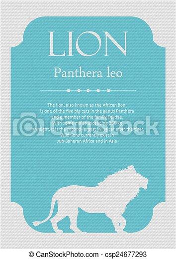 Lion - csp24677293