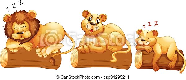 Lion family on the log - csp34295211