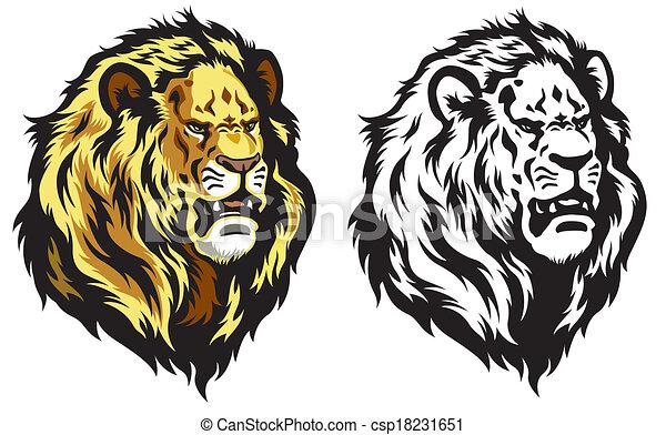 lion head - csp18231651