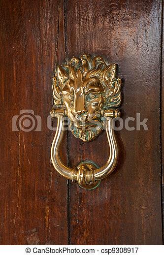 Lion Head Door Knocker On Old Wooden Door