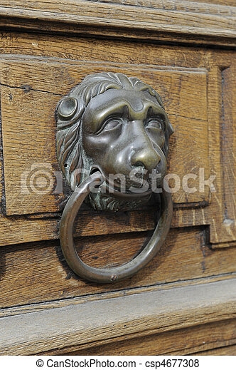 Gentil Lion Head Door Knocker   Csp4677308