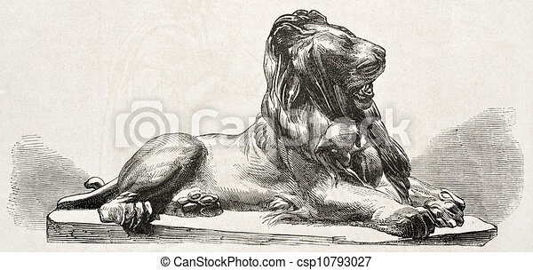 Line Drawing Of Lion : Clip art of lion black white k search clipart