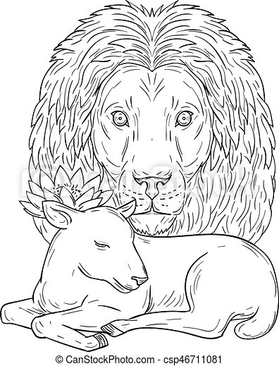 Lion Watching Over Sleeping Lamb Drawing Drawing Sketch Style