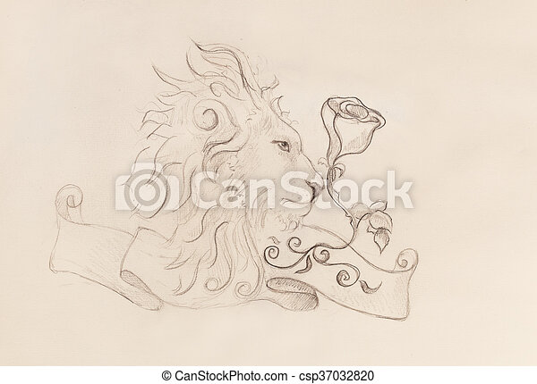 Lion with rose and ribbon with ornament, original drawing, pencil sketch on paper. - csp37032820