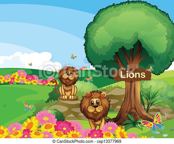lions, bois, enseigne, deux, jardin - csp13377969
