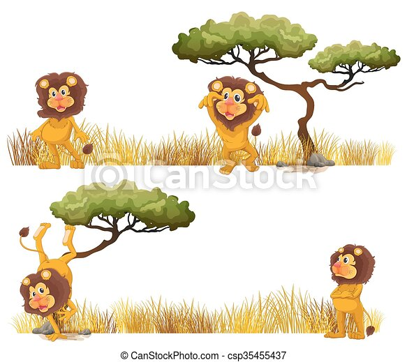 Lions living in the field - csp35455437