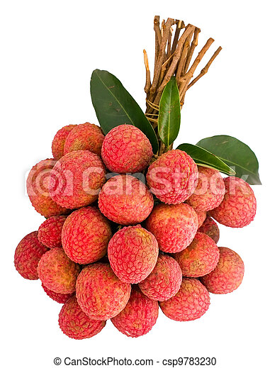 Litchi with green leaf - csp9783230