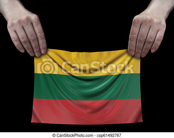 Lithuanian flag in hands - csp61492767