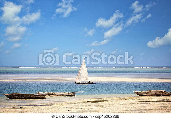 La costa de Zanzibar - csp45202268