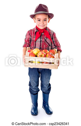 Little agriculturist boy holding apples in crate - csp23426341