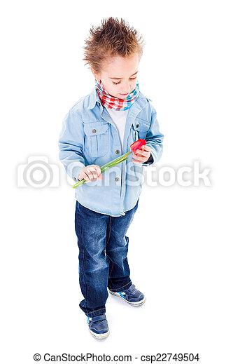 Little boy holding a tulip - csp22749504