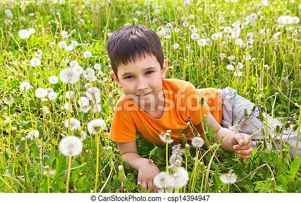 Little boy in dandelions - csp14394947