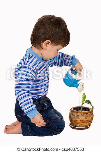 Little boy pours a plant - csp4837553