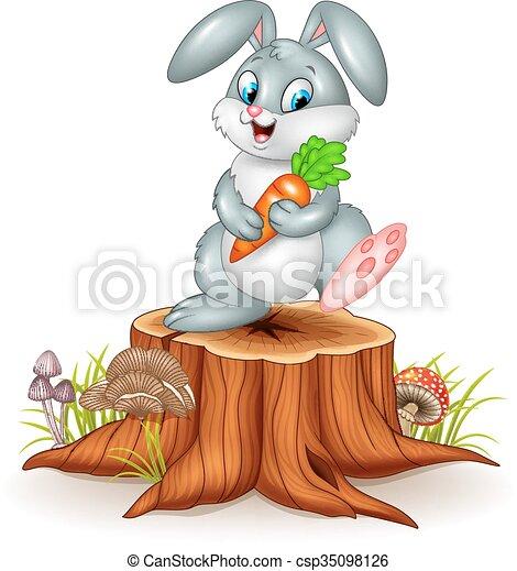 Little bunny holding carrot  - csp35098126