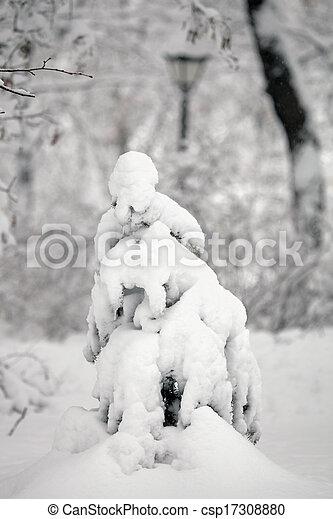 Little fir tree under snow. - csp17308880