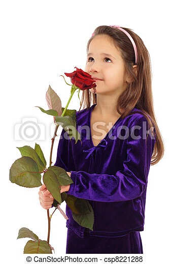 Little girl dreaming with a rose, isolated on white - csp8221288