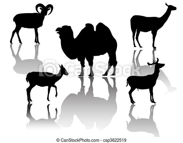 little group of hoofed animals - csp3622519